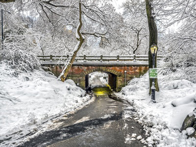 This wintery scene in central park is swamp cooler cold